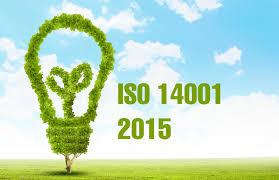 ISO 14001 2015 Belgesi Hangi Alanlarda Yardımcı Olmaktadır?